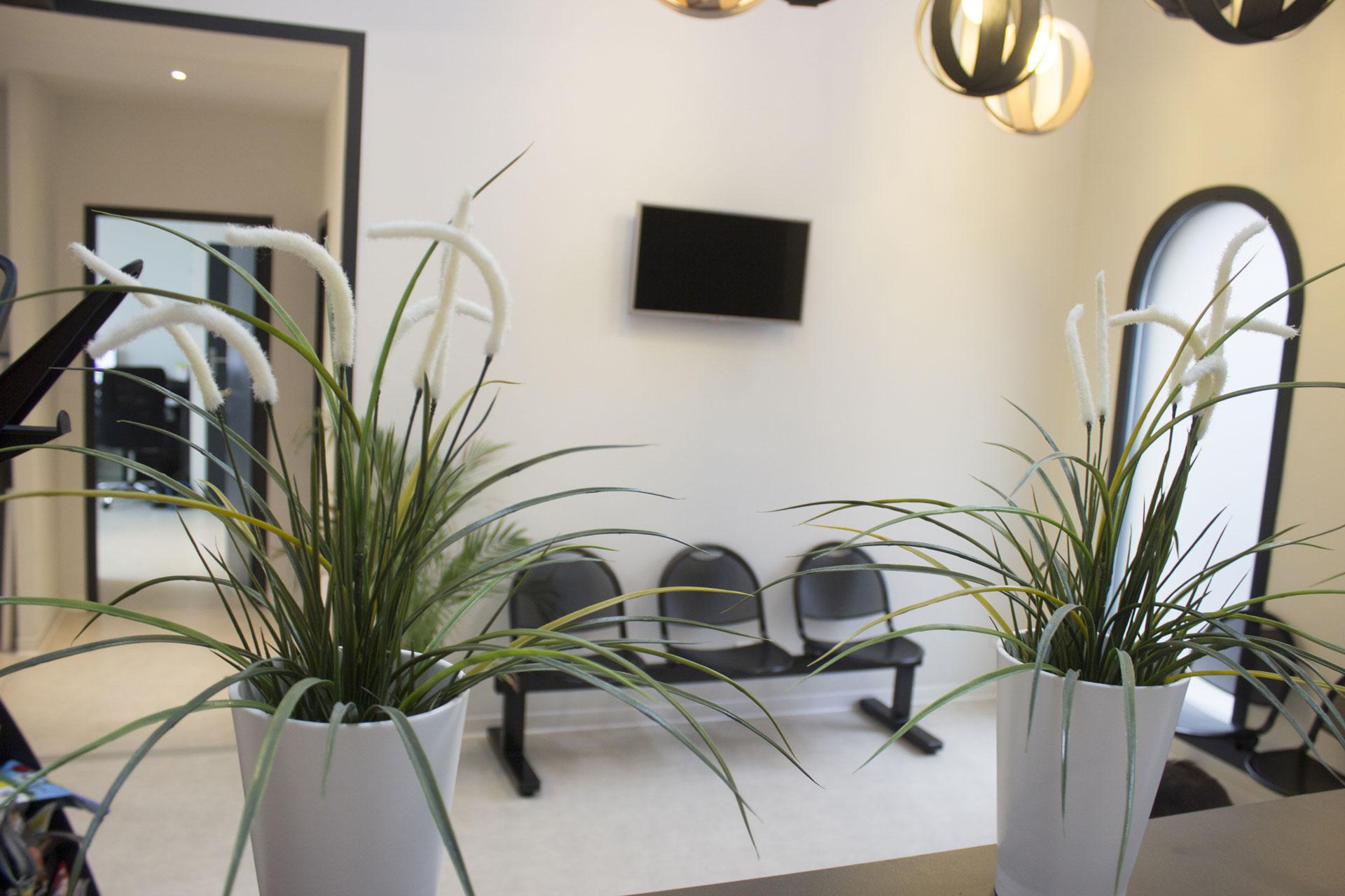 salle d attente cabinet dentaire bordeaux tivoli